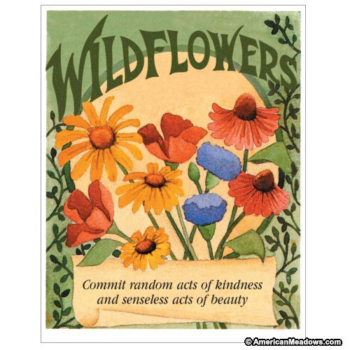 Davids Garden Seeds Flower Seed Favor Packetquotrandom Acts Of Kindness&quot Fef multi Color 20 Packets