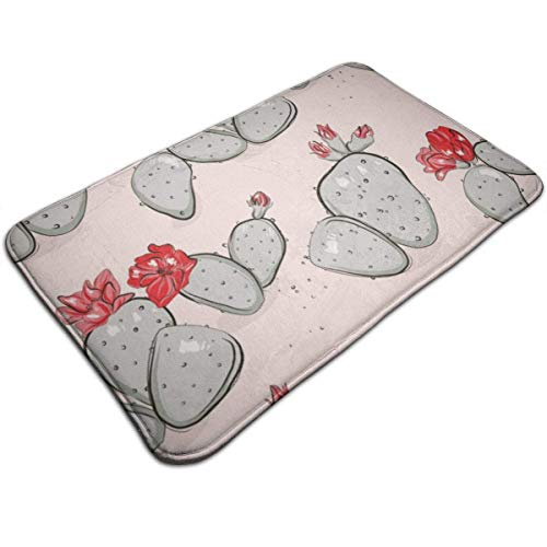 996 Ceekke Floor Mat Cactus Bloom Red Pink Summer Pattern Hand-Drawn Bathroom Doormat Kitchen Floor Rug 50x80 cm