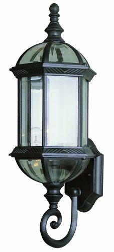 Trans Globe Lighting 4180 Bk 22-14-inch 1-light Outdoor Wall Lantern Black
