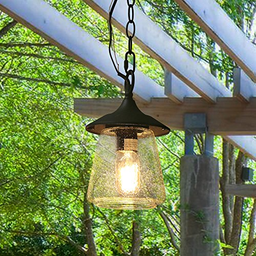 LOG BARN Outdoor Lantern Pendant Painted Black Metal with Clear Bubbled Glass Globe Hanging Porch Light Fixture 94 Lamp